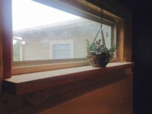 A beautiful window that will hold a plant. Much better than a blank wall!