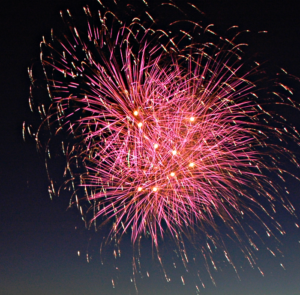 A colorful firework explodes in the night sky.