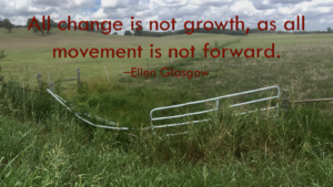 All Change is not Growth.