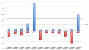 Bogus 12 Month Cash Flow chart